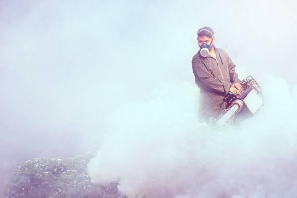 Fumacê Dengue