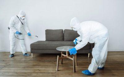Tudo o que você precisa saber sobre sanitização e desinfecção de apartamentos, casas e firmas em Jacarepaguá segundo a Lei nº 8839